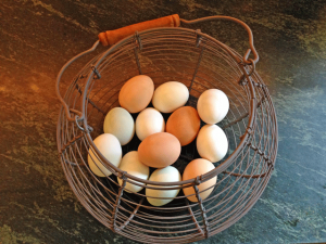 backyard chicken eggs 300x225 Raising Backyard Chickens for Dummies